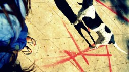 mural muralpainting wall wallpainting street streetart urban urbanart streetphotography thestreetisourgallery art arte artist artista sunny soleado feet foot perra dog woman mujer
