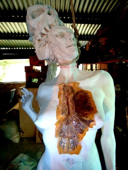 decay clay arcilla priming imprimacion lifesize woman sculpture escultura mujer tamañonatural resin resinpolyester resinapolyester naked desnuda skull craneo calavera