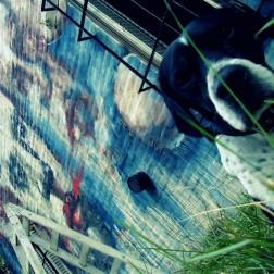 mural muralpainting wall wallpainting street streetart urban urbanart streetphotography thestreetisourgallery art arte artist artista dog perra woman mujer